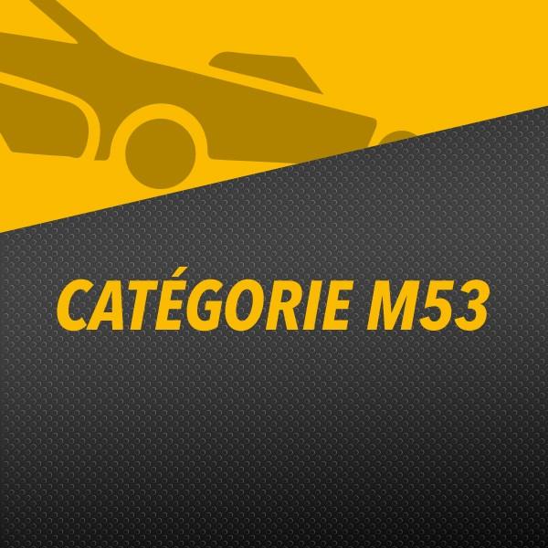 Tondeuse M53 McCULLOCH